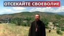 Отсекайте своеволие. Священник Игорь Сильченков