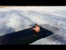 Последнее купание в отпуске. Завтра на работу. озеро Котлован 29.01.17 г