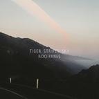 Roo Panes альбом Tiger Striped Sky