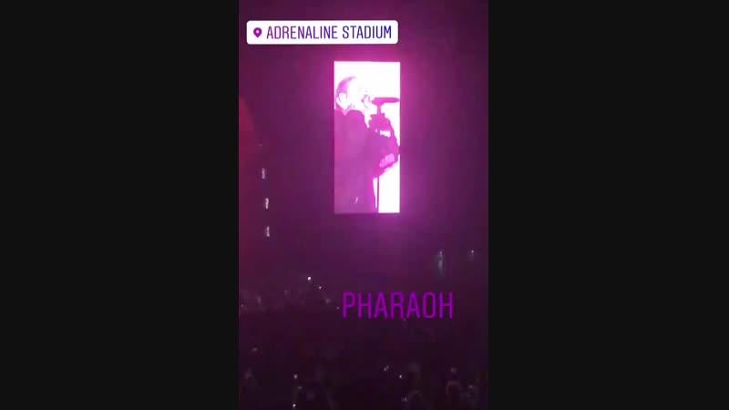 PHARAOH Последний трек на стене (Москва)