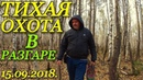 Поход за грибами сентябрь 2018 Сбор благородных грибов Грибы Пермский край