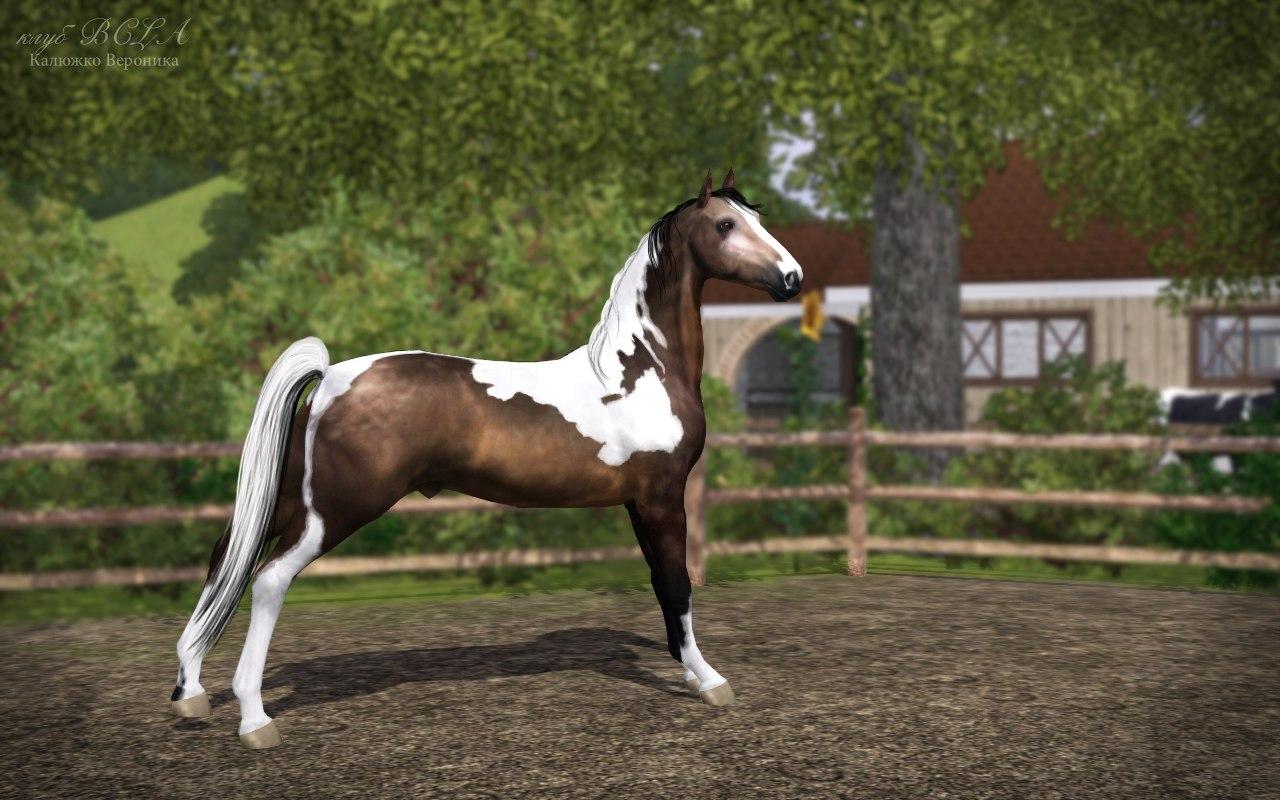 Регистрация лошадей в RHF 1.1 - Страница 2 4R7eezMkXII