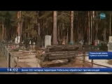 Заторы на Червишевском кладбище