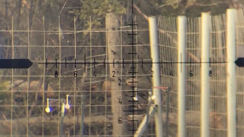 Варминт 4г пулями из егеря на 100м