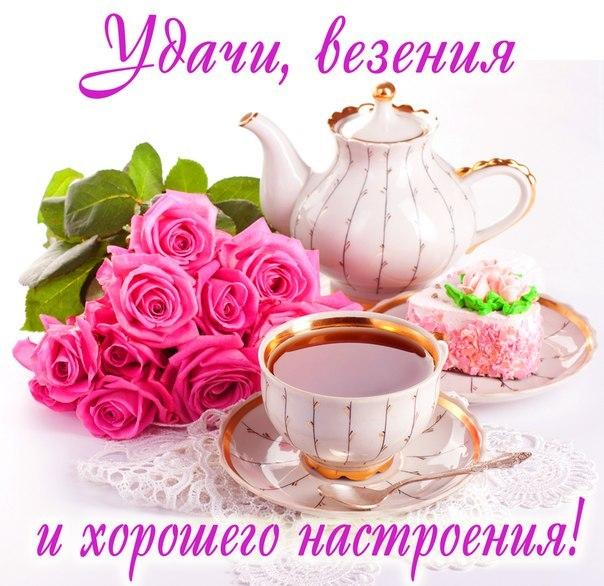 http://cs403820.vk.me/v403820206/73a5/9iP_aTZbYEM.jpg