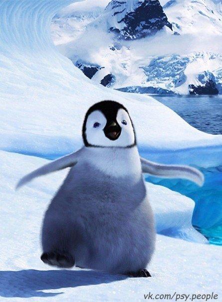 Пингвин зимой