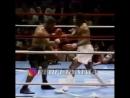 Эффективная защита в боксе пикабу от Майка Тайсона