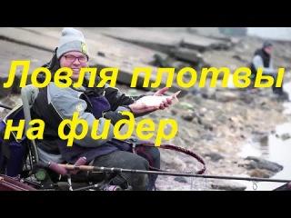 Ловля плотвы на фидер ранней весной на реке Москва,Рыбалка c Алексеем Фадеевым