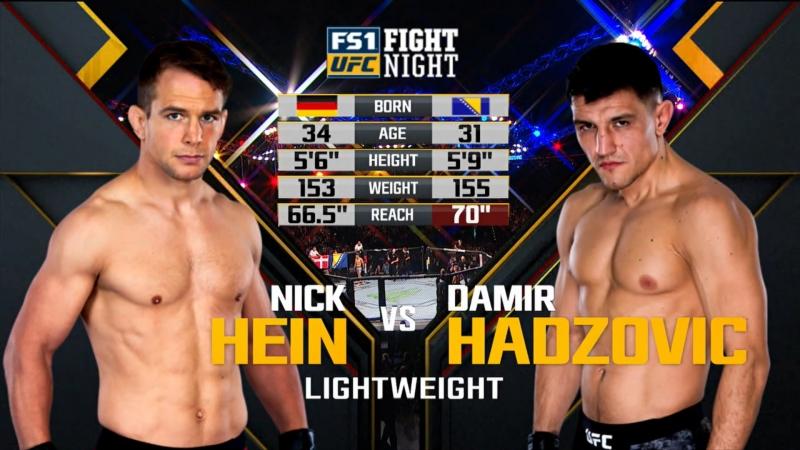 UFC FN 134 Nick Hein vs. Damir Hadzovic