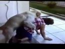 Спаривание животных с людьми