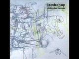 Lambchop - Interrupted