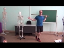 FPA Упражнения с отягощениями ч 1