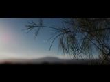 Zedd feat. Alessia Cara - Stay (Lyric Video) vk.comgo_deephouse