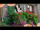 Андрей Шлехт-А розы отцвели-Автор ролика-Валентина Пескова