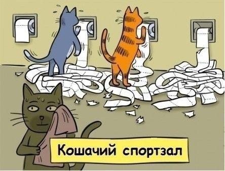 девочек том: