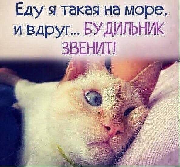 Фото №456243097 со страницы Светланы Гайнутдиновой