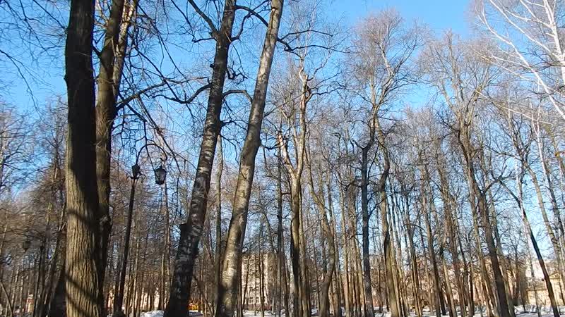 Апрель в Александровском саду. 14.04.2019 __Видео Г.Т.И.