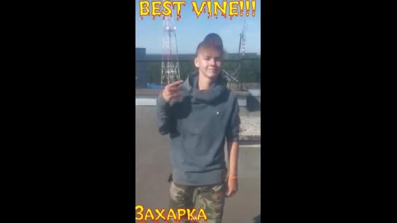 Z A H A R K A)37(BEST VINE)