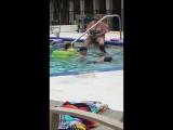 Когда люди спрашивают меня: Почему я не купаюсь в бассейне?, я показываю им это: