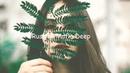 Женя Soul x DJedi Lee x DVLGVT - Моя NIKE SW Prod.