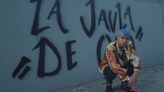 Kap G - A Day Without A Mexican Music Video