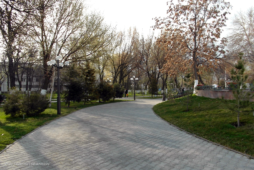 Аллея в Центральном парке, Шымкент 2019