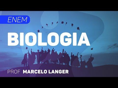 Biologia   ENEM - Introdução à Biologia   CURSO GRATUITO COMPLETO