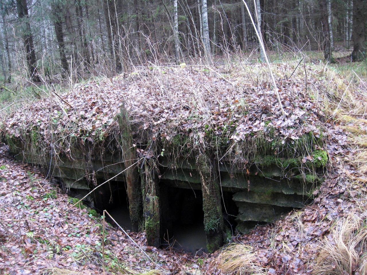 В глушь под Киришами. Немецкая линия обороны у станции Тигода.