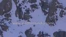 Невероятная охота снежного барса на свою добычу !