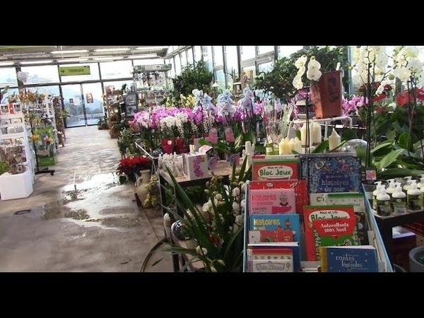 Цветочный магазин в маленьком городке меня удивил! Корсика