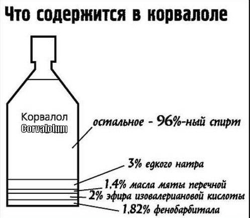 Как жить здорово бросить пить спиртное