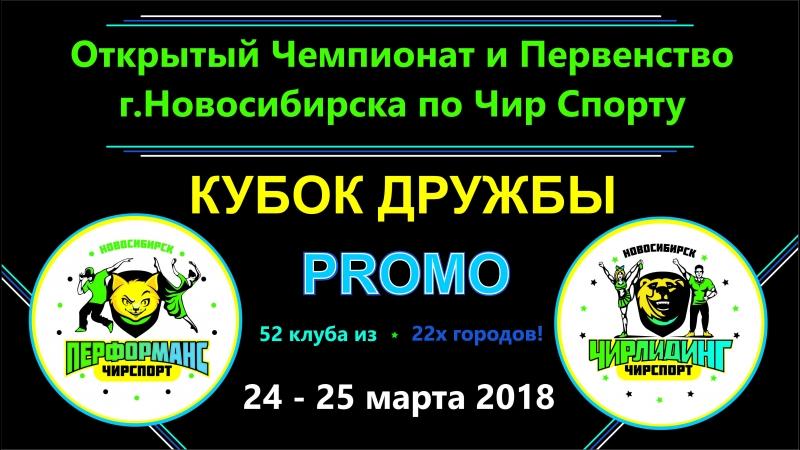 Кубок ДРУЖБЫ по Чир Спорту 24-25 марта 2018 г.Новосибирск