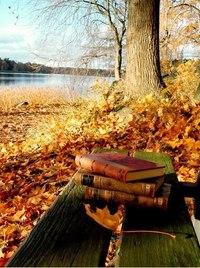 Отцвели цветы, падают листья, птицы молчат, лес пустеет и затихает.ОСЕНЬ. - Страница 6 G6WQngLpB4Q