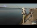 Харків'яни висловилися з приводу розвитку рибної галузі та привітали рибалок