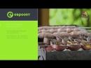 Кулинарные открытия с Евроопт. Люля-кебаб на мангале от Вартана Санамянца
