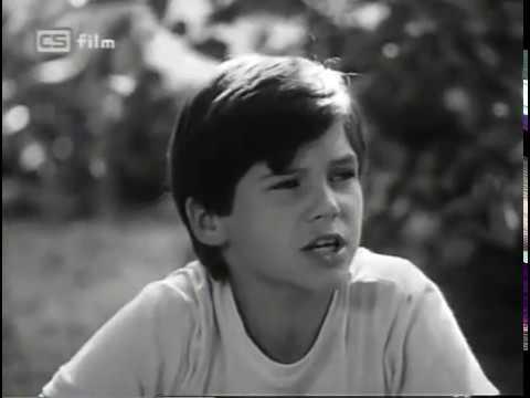 Sojky v hlave / The Jays In The Head - Slovakia (1983)[English subtitles!]