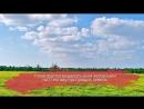 «Вологодский гектар»: в регионе предлагают бесплатно выдавать земли