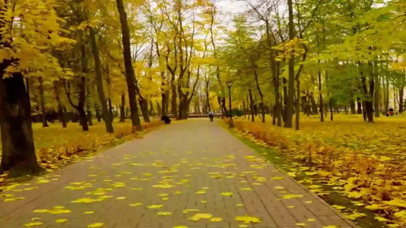 Timelapse Смоленск. Seasons (Борис Гребенщиков - По Смоленской дороге (Стихи Булат Окуджава))