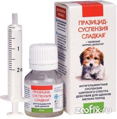 вакцинация от паразитов