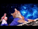 Epic sax guy and cat in a cosmos