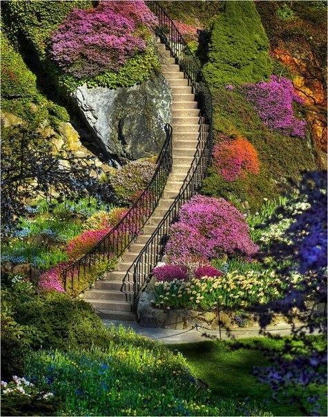 В вечноцветущих садах Будхарт в