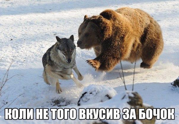 """Яценюк предлагает закрыть Лукьяновское СИЗО: """"Там условия, при которых не то что жить - выживать невозможно"""" - Цензор.НЕТ 9540"""