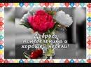 Video_name_11_29_2018_17_04.mp4