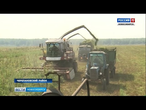 Аграрии Новосибирской области получат 200 млн рублей компенсации роста цен на горючее