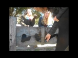 Two Girls in Black Tights Tickled
