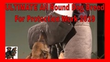 Ultimate Dog Breed For Protection Work 2019