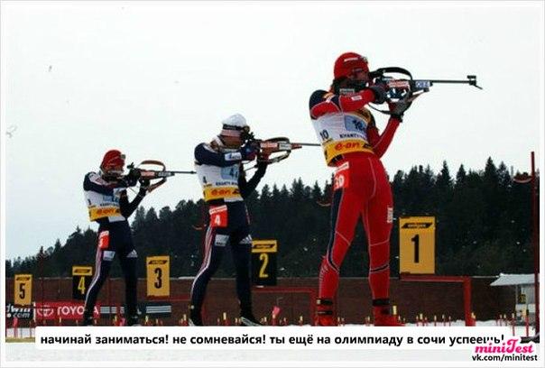 статистика олимпиады