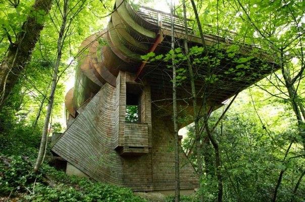 Дом на дереве — дом мечты нашего детства