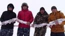 Первый снег, вторая рыбалка на жерлицы в хорошей компании, трофейная рыбалка.
