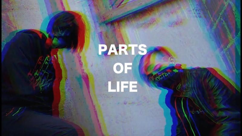 DEMONIZED X VGSH - PARTS OF LIFE